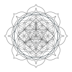 Mandalas fleur de vie